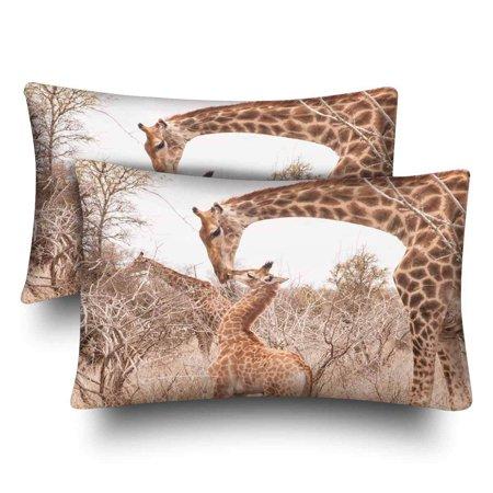 GCKG Cute Little Giraffe Cub Kissing His Mother Wildlife Pillow Cases Pillowcase 20x30 inches Set of 2 - image 4 de 4