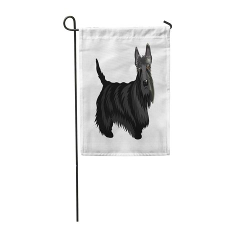 POGLIP Cute Cartoon Dog Scotch Terrier of on Separate Black Garden Flag Decorative Flag House Banner 28x40 inch - image 1 de 1