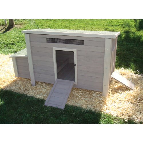 Precision Pet BackCoop Backyard Barn Chicken Coop