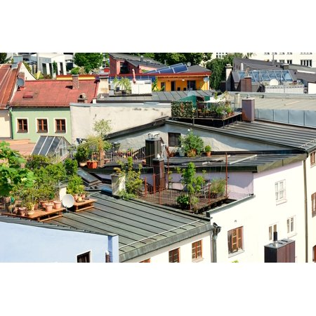 LAMINATED POSTER Roof Terrace Garden Terrace Roof Garden House Roof Poster Print 24 x 36 ()