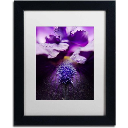Trademark Fine Art 'Stigma of Iris' Canvas Art by PIPA Fine Art, White Matte, Black Frame - Irises Framed Canvas
