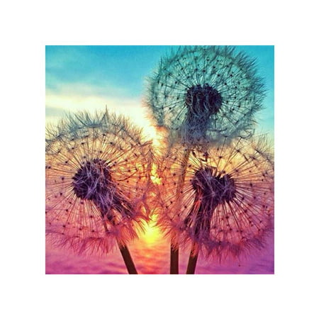 Sunshine and Colored Flowers Pattern Printed 5D Diamond Painting Rhinestone for Bedroom DIY Cross Stitch Picture