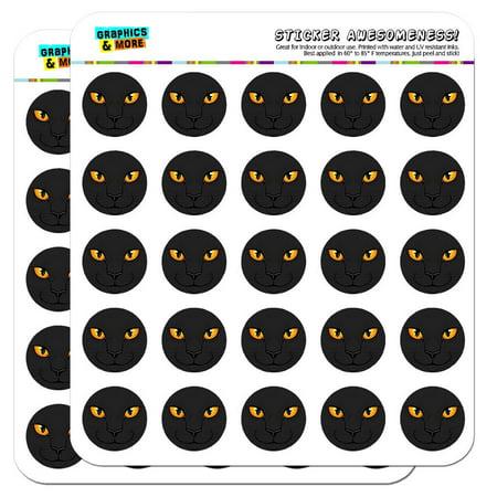 - Black Cat Face Pet Kitty 1