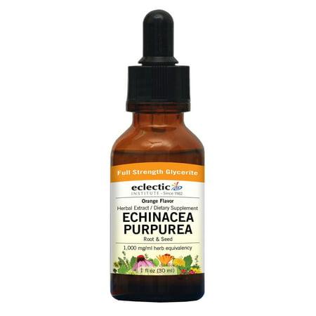 Echinacea Purpurea-Orange No Alcohol Glycerite Eclectic Institute 1 oz Liquid Echinacea Purpurea Echinacea Medicine