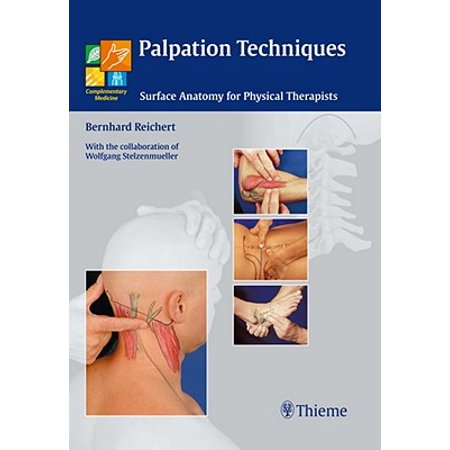 Palpation Techniques Surface Anatomy For Physical Therapists