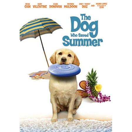 Dennis Dog (The Dog Who Saved Summer (DVD) )