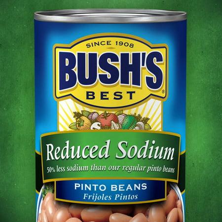 6 PACKS : Bushs Best Low Sodium Pinto Beans, 111 (The Best Pinto Beans)