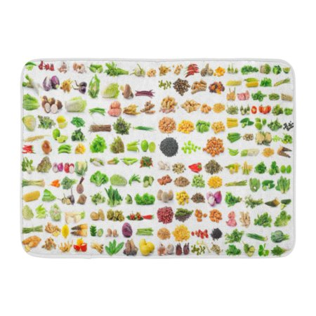 GODPOK Onion Green Collection of Vegetable on White Red Fruit Potato Rug Doormat Bath Mat 23.6x15.7 inch