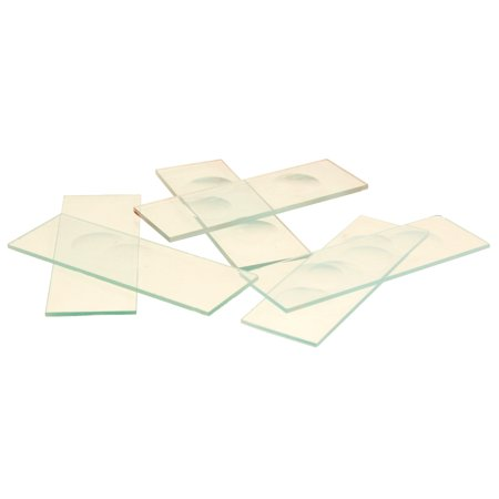 Biology Microscope Slides (Eisco Labs Microscope Slides, With Triple Concavity, Pack of)