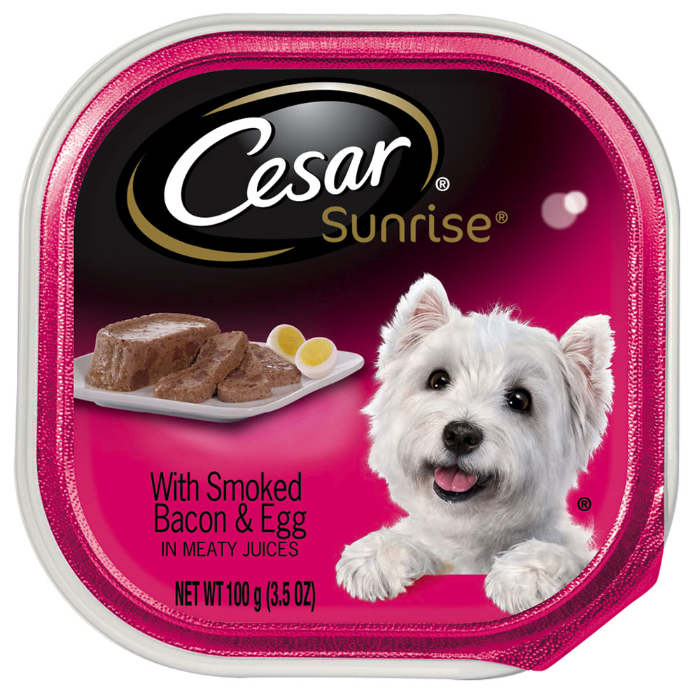 (12 Pack) CESAR SUNRISE Wet Dog Food with Smoked Bacon and Egg Souffle Breakfast, 3.5 oz. Tray