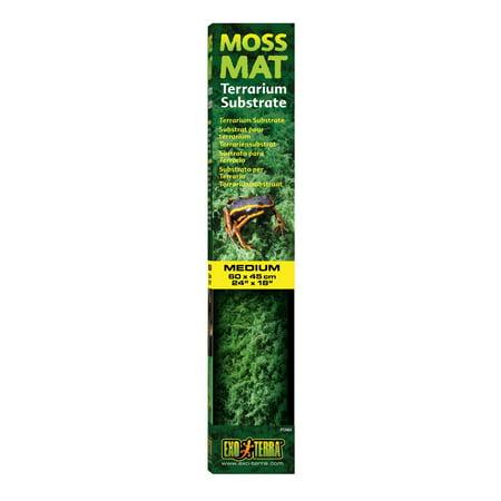 Moss Mat, Medium 24