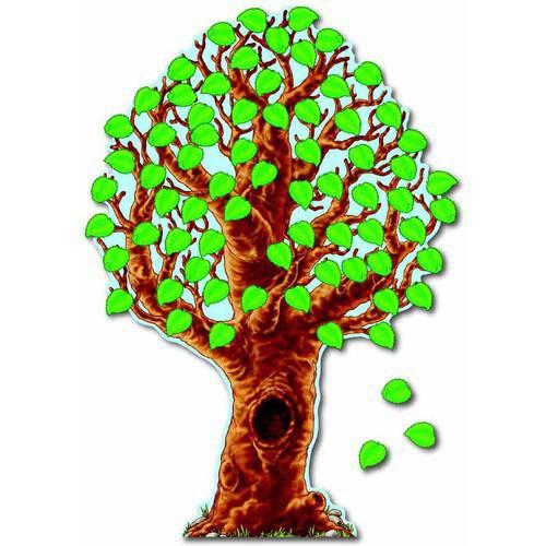 """Carson-Dellosa Big Realistic Tree Design Bulletin Board Set, 46"""" x 70"""" by Carson-Dellosa Publishing LLC"""