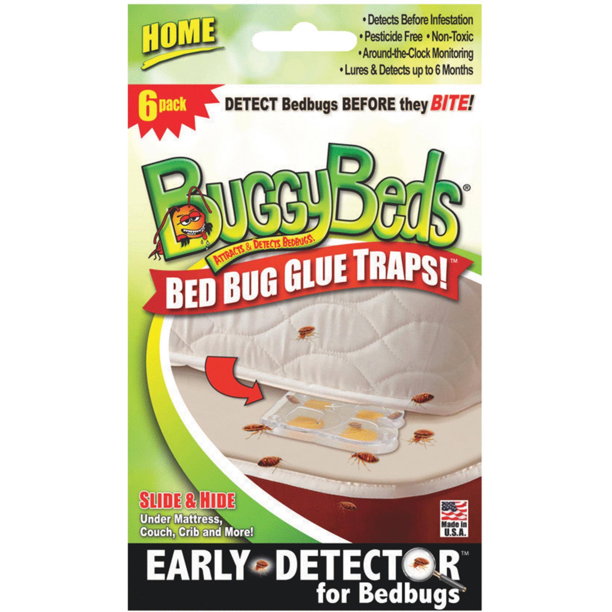 Image result for Buggy Beds