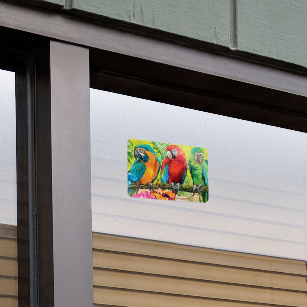 Colorful Tropical Rainforest Parrots Home Business Office Sign