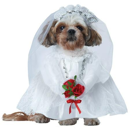 Puppy Love The Bride Halloween Pet Costume (Puppy Halloween Tutorial)