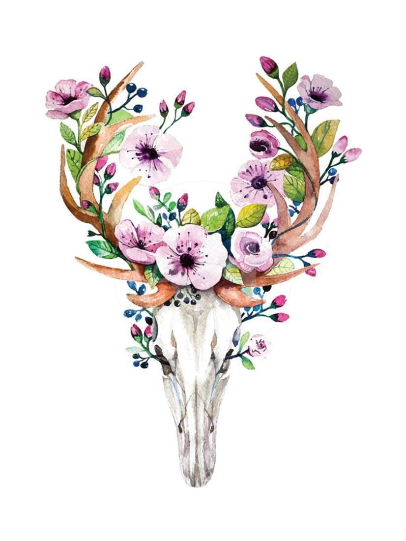 Deer Skull with Flowers - Watercolor Print Wall Art By ...