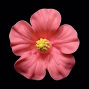Pink Hibiscus Flower Royal Icing Cake/Cupcake Decorations 12 Ct - Halloween Royal Icing Cookies