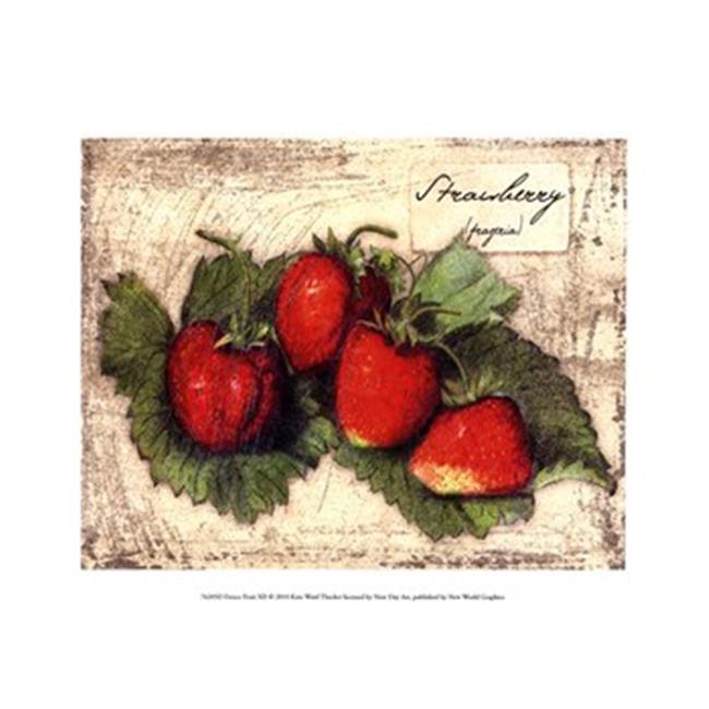 Vieux Monde Affiches OWP76205D Fresque Fruit XII copie d'affiche par Kate Ward Thacker -13 x 9,5 - image 1 de 1