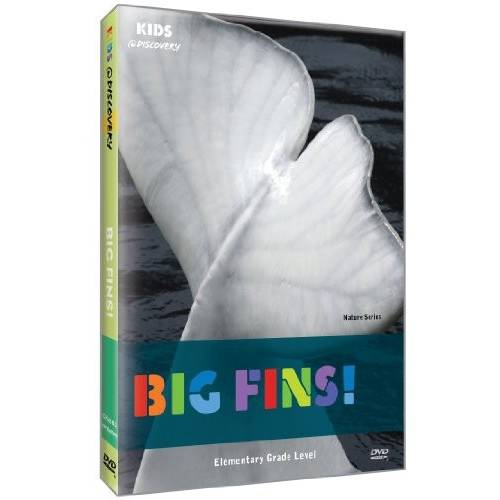 Kids @ Discovery Nature: Big Fins!