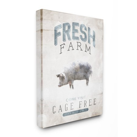 (The Stupell Home Decor Collection Blue Grey and White Fresh Farm Cage Free Oversized Stretched Canvas Wall Art, 24 x 1.5 x 30)