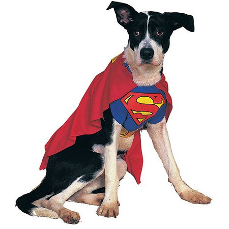 Superman Dog Pet Pet Costume - X-Large - Cowgirl Halloween Costumes For Dogs