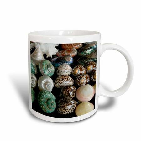 3dRose Shells for sale in market, Mahe Island, Seychelles-AF39 AWR0317 - Alison Wright, Ceramic Mug, 15-ounce