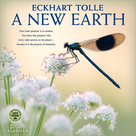 New Earth 2020 Wall Calendar: By Eckhart Tolle (Other) (Tolle Sonnenbrille)