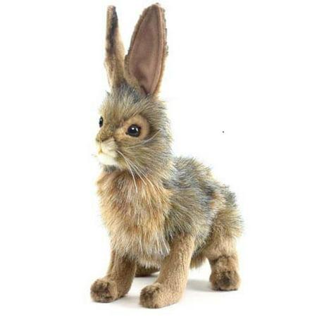 """Plush - 9"""" Blacktail Jack Rabbit, Faux By Hansa"""