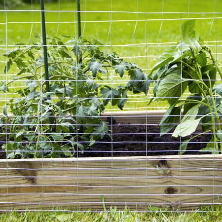 "Expert Gardener Galvanized Steel Rabbit Guard Fence, 24"" x 50'"
