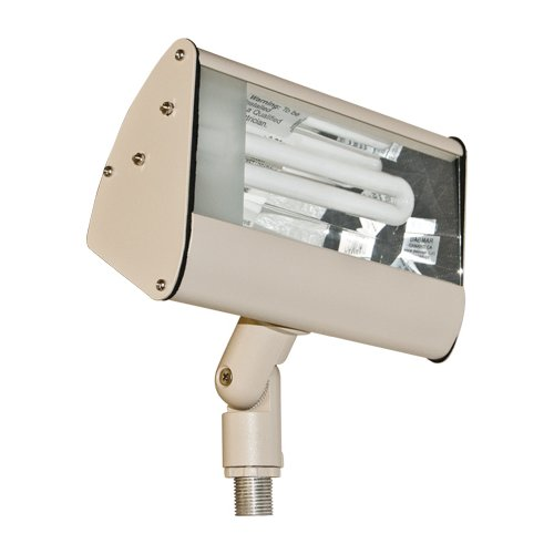 Dabmar Lighting 1-Light Flood Light by Dabmar Lighting
