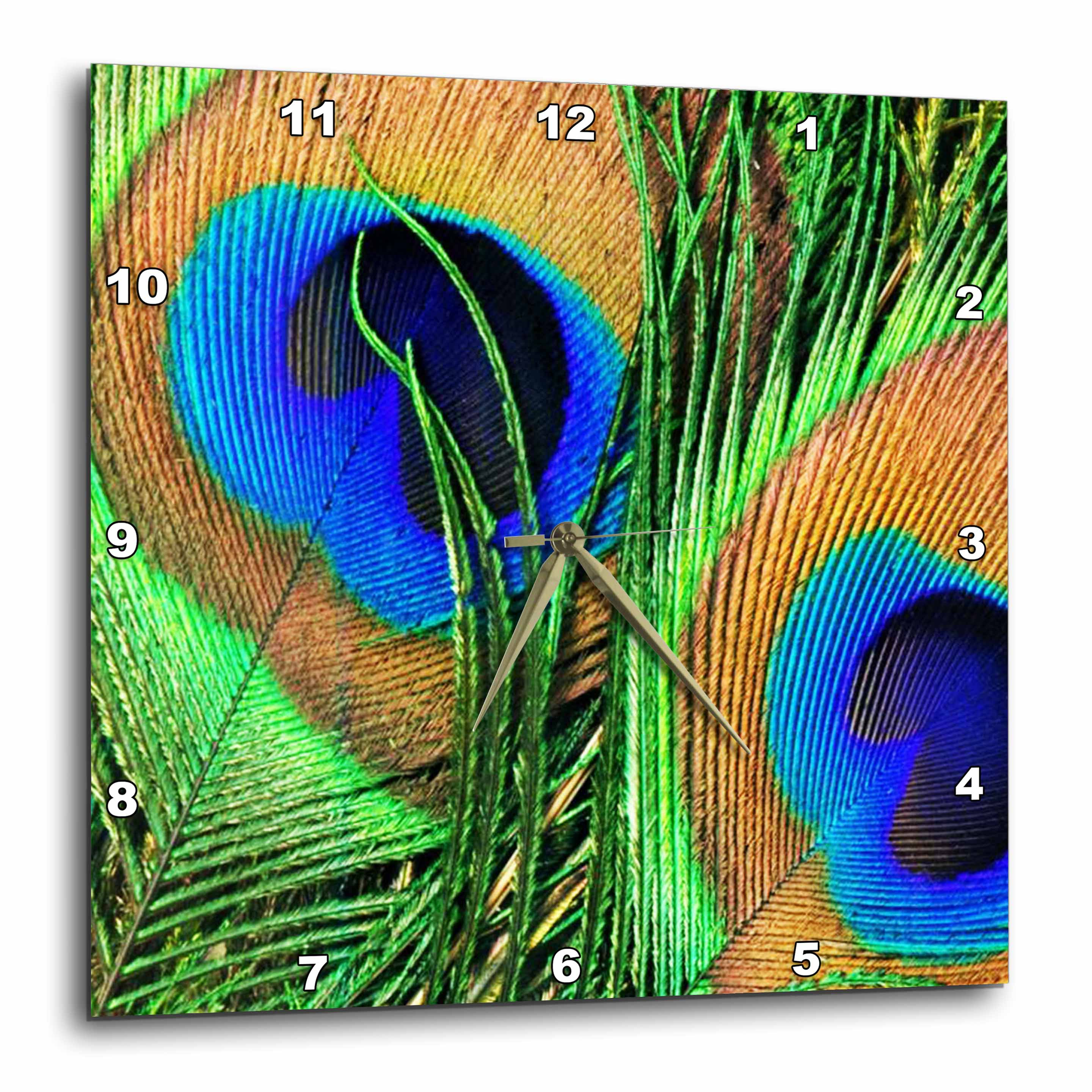 3dRose Blue, green, and orange colored peacock feathers, Wall Clock, 15 by 15-inch