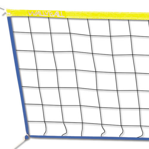 Wallyball Net