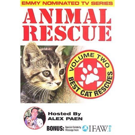 Animal Rescue, Vol. 2: Best Cat Rescues (The Best Romantic Anime Series)
