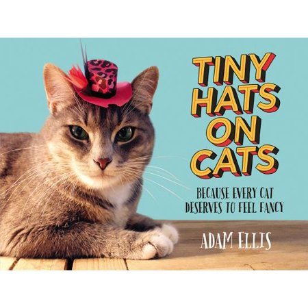 Tiny Hats on Cats : Because Every Cat Deserves to Feel Fancy](Cat In The Hat Makeup Face)