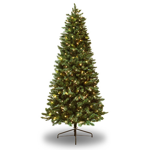 Astella 7' Pre-Lit Douglas Fir Christmas Tree, Clear Lights
