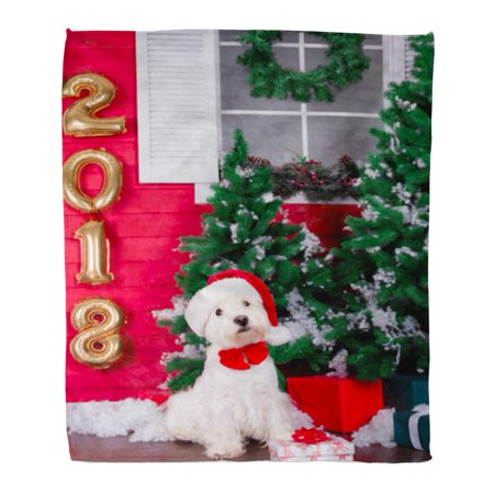 ASHLEIGH Flannel Throw Blanket Decorated West Highland White Terrier Dog As Symbol Soft for Bed Sofa and Couch 58x80 Inches (Highland Throw)