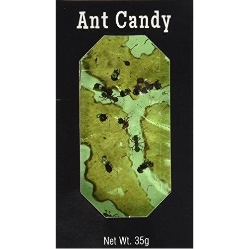 Ant Candy Apple- 1 Package