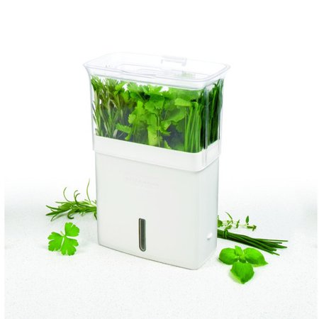 Cole & Mason Fresh Herb Keeper Plastic Pot Planter