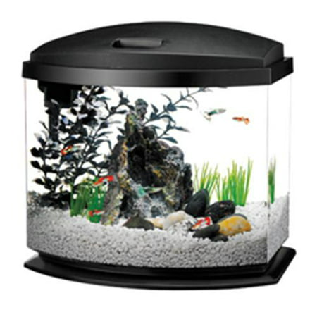 AQUEON PRODUCTS - GLASS , 100117786 , AQUEON LED MINIBOW AQUARIUM KIT , 5 GALLON ()