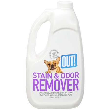 Out Stain And Odor Remover  64 Oz