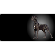 Great Dane Photo License Plate Free Personalization on this plate