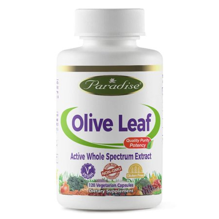Olive Leaf Vegetarian Capsules, 120 Count (Packaging may vary) Paradise Herbs - 120 - 120 Count Package
