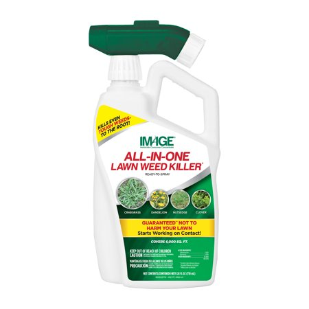 Image All-In-One Lawn Weed Killer Ready-to-Spray; 32