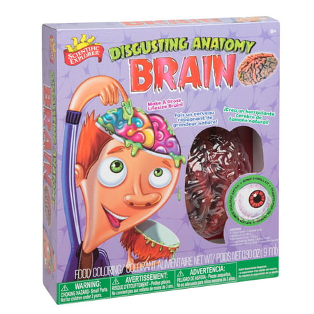 Scientific Explorer Disgusting Anatomy Brain - Anatomy Games