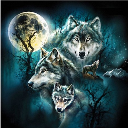 Diy Abstract Painting (DIY 5D Frameless Wolf Full Drill Diamond Painting Canvas Wall Art Prints Pictures, Modern Abstract Paintings, Canvas Wall Art, Home)