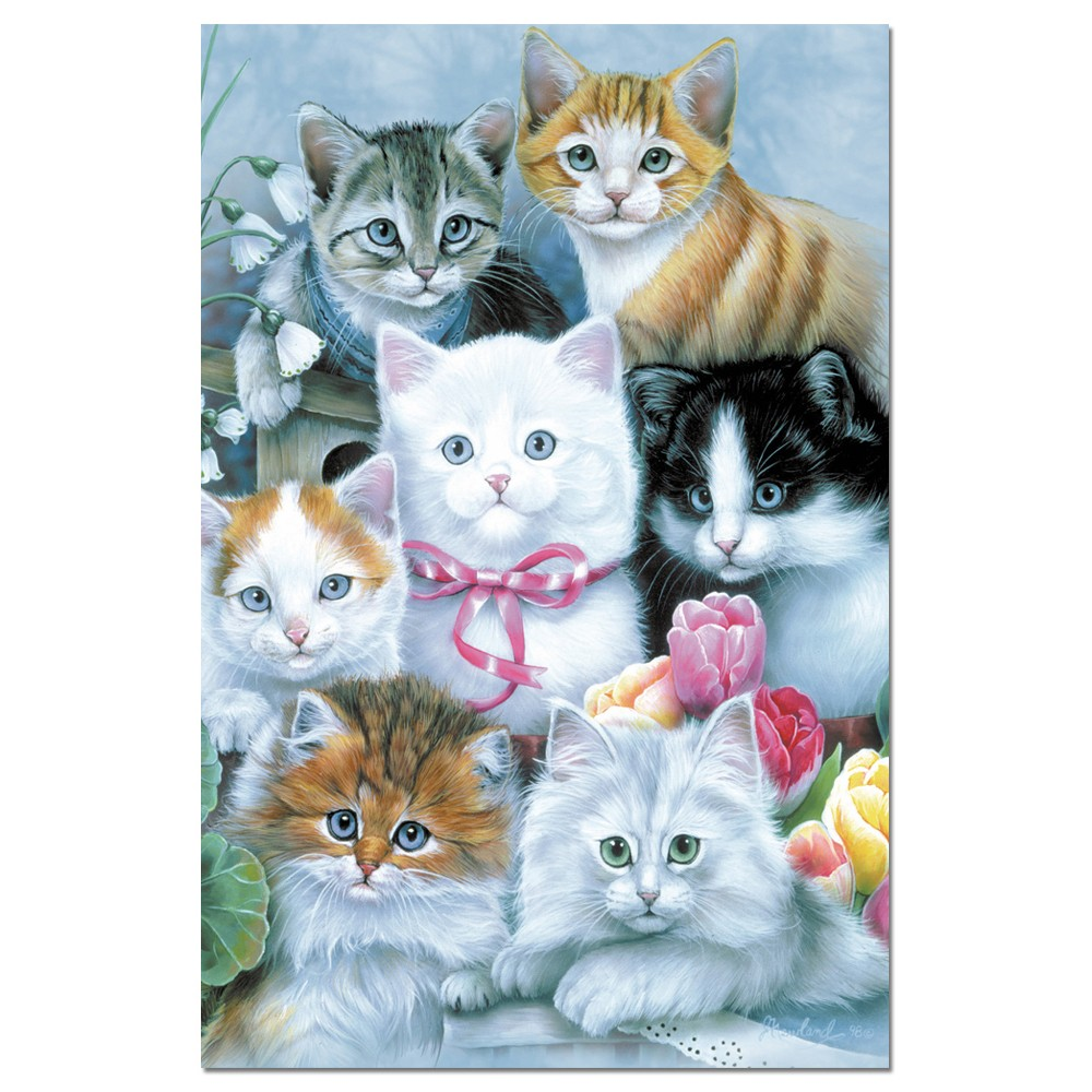 Tree-Free Greetings Cuddly Kittens Boxed ECOnotes Blank Note Cards-FS66532