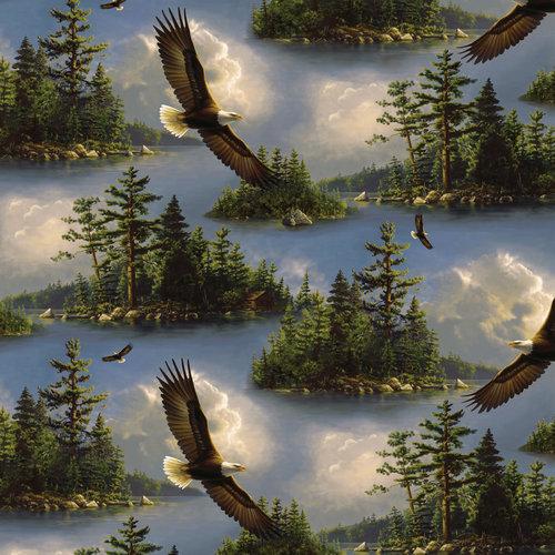 VIP Fabrics Eagles Scenic Fabric
