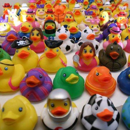 Rhode Island Novelty RDAS100 Rubber Duck - Rubber Duck Clip Art