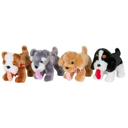 Schnauzer Puppies - 12
