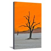 Africa, Namibia, Sossusvlei. Dead Acacia Trees in the White Clay Pan at Deadvlei in the Morning Lig Stretched Canvas Print Wall Art By Hollice Looney